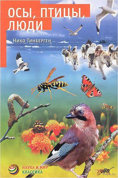 Осы, птицы, люди — фото, картинка