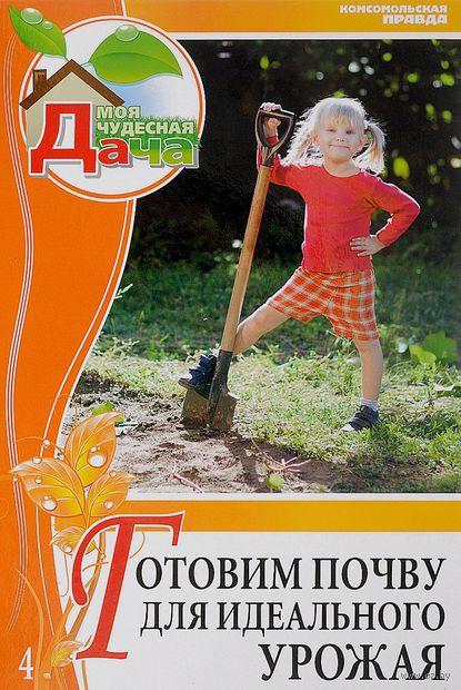 Готовим почву для идеального урожая. Андрей Туманов