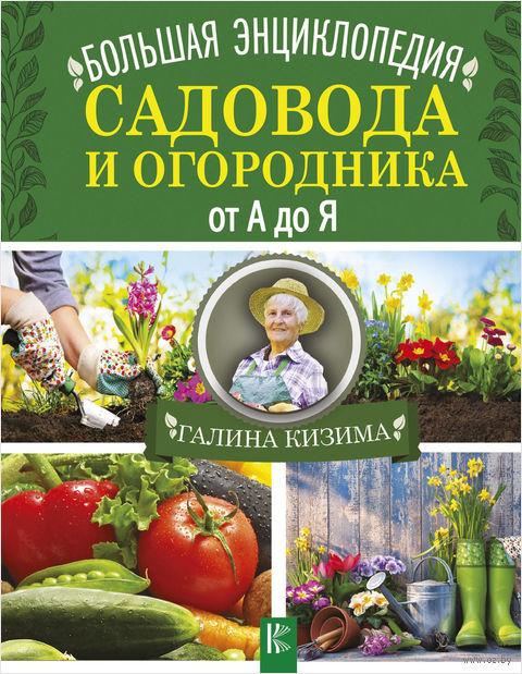Большая энциклопедия садовода и огородника от А до Я — фото, картинка