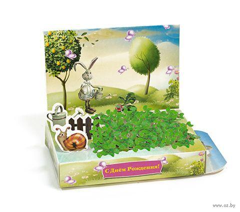 """Набор для выращивания растений """"Живая открытка. С днем рождения, Зайка"""" — фото, картинка"""