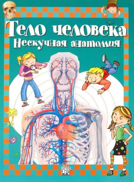 Тело человека. Нескучная анатомия — фото, картинка