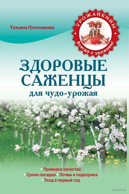 Здоровые саженцы для чудо-урожая. Т. Плотникова