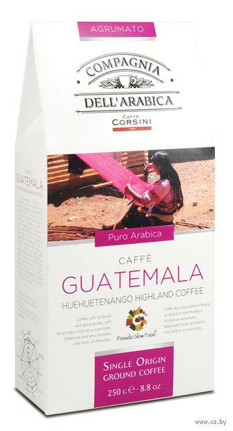 "Кофе молотый ""Compagnia Dell Arabica. Guatemala"" (250 г) — фото, картинка"