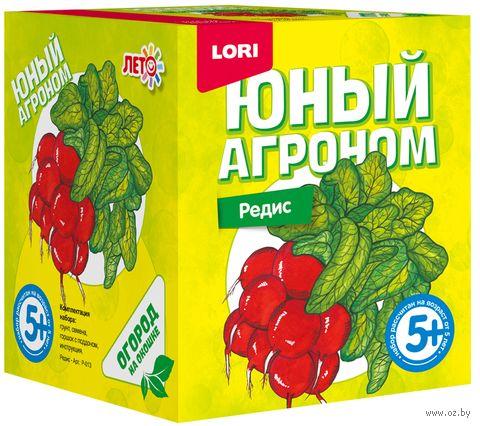 """Набор для выращивания растений """"Редис"""" — фото, картинка"""