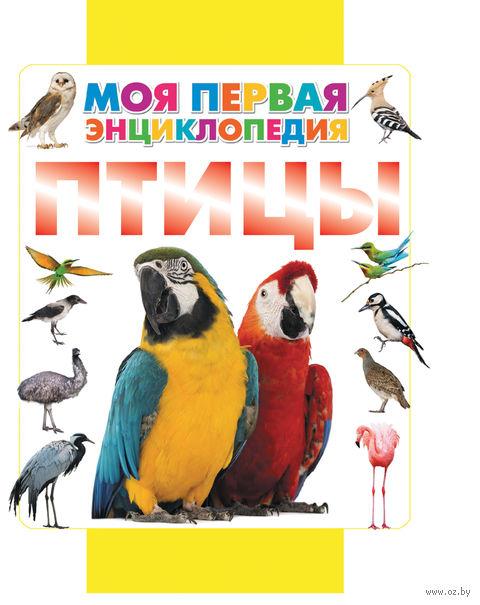 Птицы. Дмитрий Кошевар