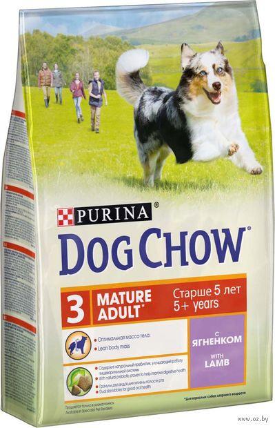 """Корм сухой для собак """"Mature Adult"""" (2,5 кг; ягненок) — фото, картинка"""