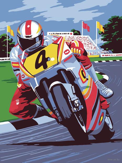 """Картина по номерам """"Мотоциклист"""" (300х400 мм) — фото, картинка"""