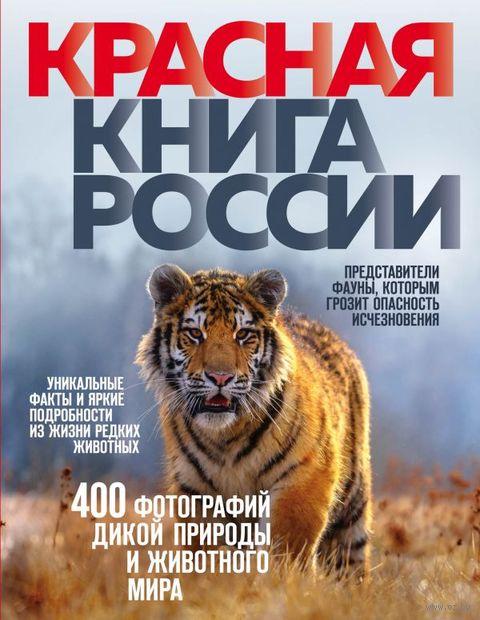 Красная книга России. Оксана Скалдина
