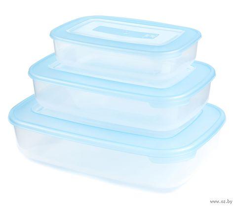 Набор контейнеров пластмассовых термостойких прямоугольных плоских (3 шт, 0,93/1,88/3,0 л)
