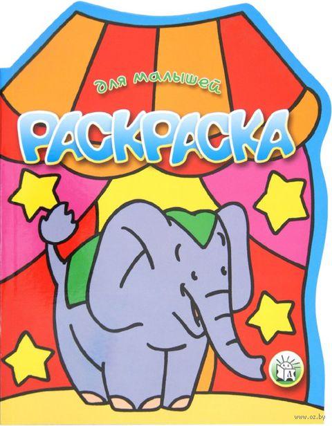 Слон. Раскраски для малышей — фото, картинка