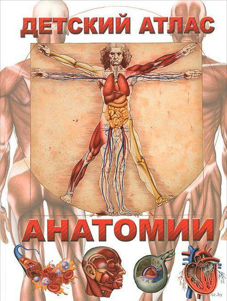 Детский атлас анатомии — фото, картинка