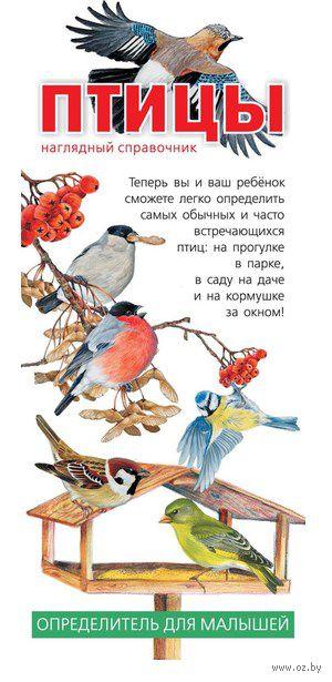 Птицы. Наглядный справочник
