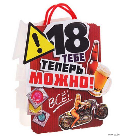 "Пакет бумажный подарочный ""Все можно"" (25х28х8 см; арт. 10367402)"