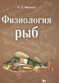 Физиология рыб — фото, картинка