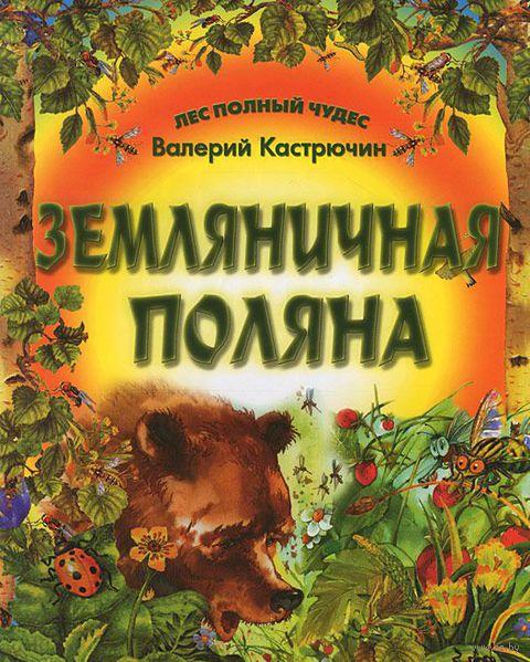 Земляничная поляна. Валерий Кастрючин