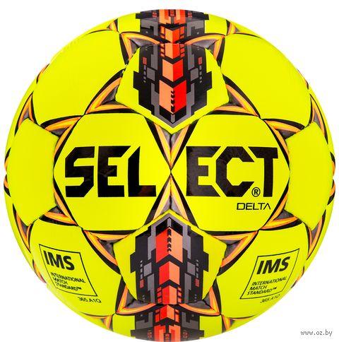 """Мяч футбольный Select """"Delta"""" №5 — фото, картинка"""