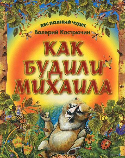 Как будили Михаила. Валерий Кастрючин