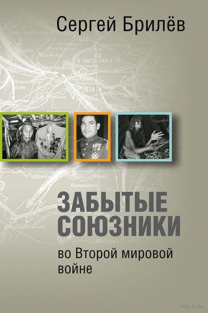 Забытые союзники во Второй мировой войне. Сергей Брилев