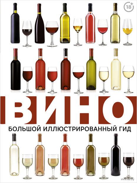 Вино. Большой иллюстрированный гид — фото, картинка