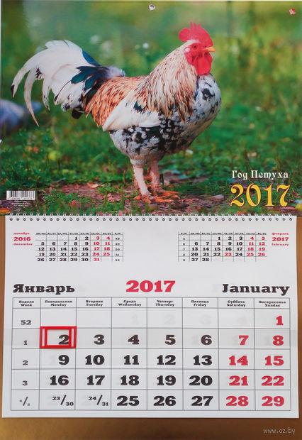 """Календарь квартальный на 2017 год """"Символ года. Благородный петух"""""""