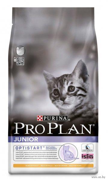 "Корм сухой для котят ""Junior"" (3 кг; курица) — фото, картинка"
