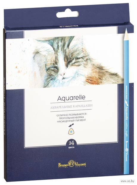 """Набор карандашей цветных акварельных """"Aquarelle"""" (24 цвета) — фото, картинка"""
