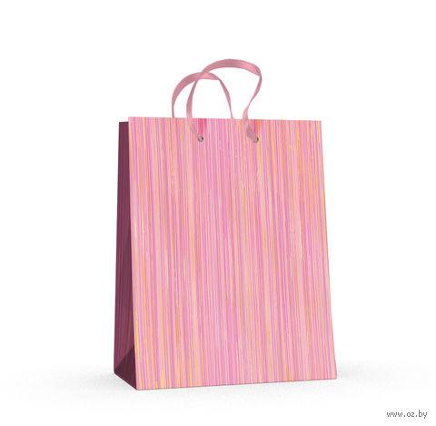 """Пакет бумажный подарочный """"Полоски"""" (17,8x22,5x10,2 см) — фото, картинка"""