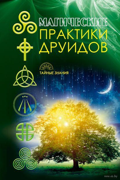 Магические практики друидов — фото, картинка