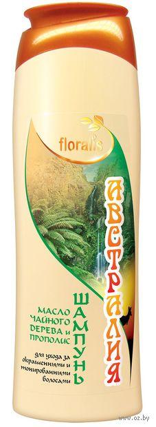 """Шампунь для волос """"Масло чайного дерева и Прополис. Австралия"""" (500 мл)"""