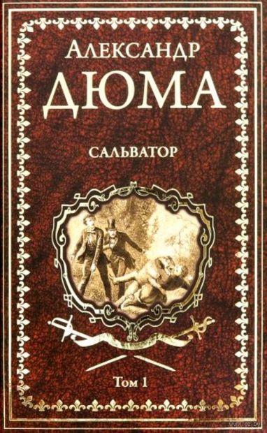 Сальватор. Том 1 (в 2-х томах) — фото, картинка