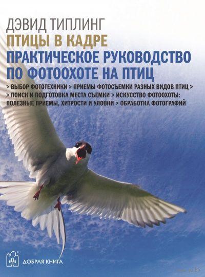 Птицы в кадре. Практическое руководство по фотоохоте на птиц. Дэвид Типлинг