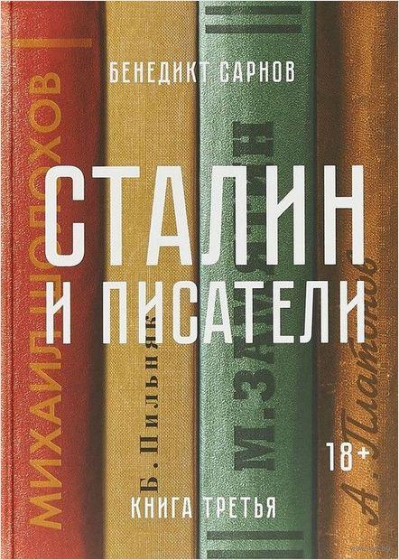 Сталин и писатели. Книга третья — фото, картинка