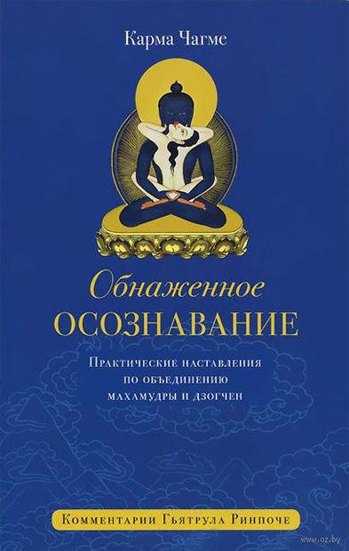 Обнаженное осознавание. Практические наставления по объединению махамудры и дзогчен (16+). Карма  Чагме