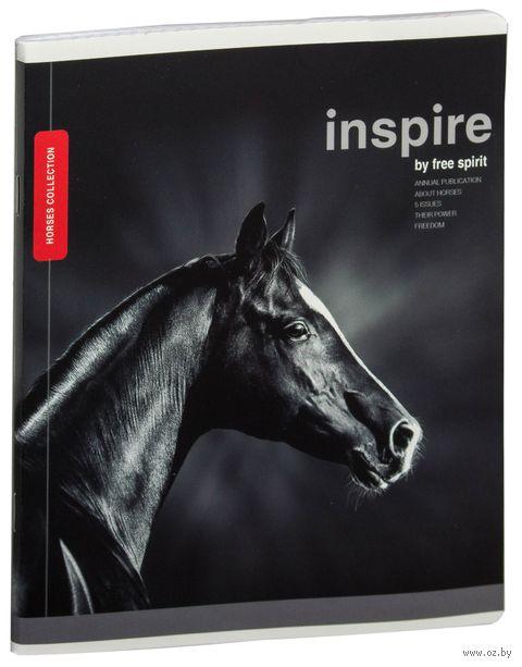 """Тетрадь полуобщая в клетку """"Лошади. Inspire"""" (48 листов; в ассортименте) — фото, картинка"""