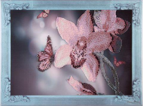 """Вышивка бисером """"Нежная орхидея"""" (300х400 мм; на подрамнике) — фото, картинка"""