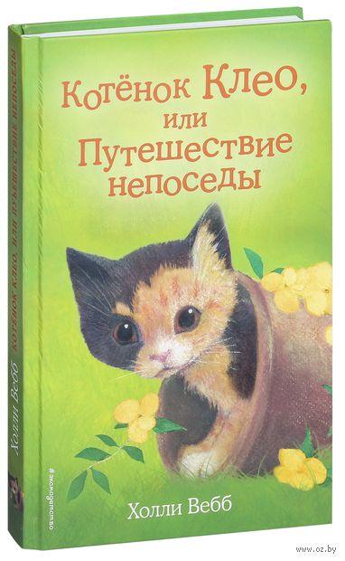 Котёнок Клео, или Путешествие непоседы — фото, картинка