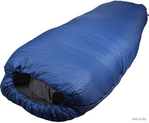 """Спальный мешок двухместный """"Double 120"""" (230 см; синий) — фото, картинка"""