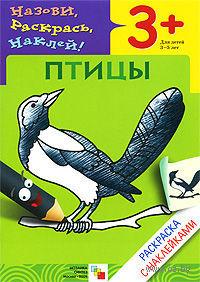 Назови, раскрась, наклей! Птицы. Раскраска с наклейками — фото, картинка