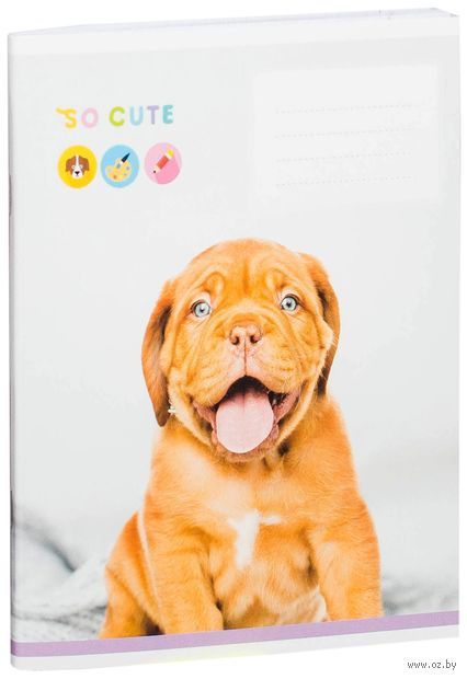 """Тетрадь полуобщая в клетку """"So Cute"""" (48 листов; в ассортименте) — фото, картинка"""