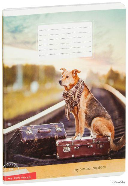 "Тетрадь в клетку ""Собаки. My Best Friend"" (48 листов)"