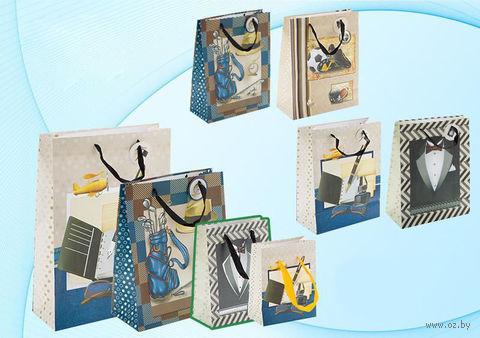 """Пакет бумажный подарочный """"Мужская тематика"""" (в ассортименте; 32x44x12 см; арт. МС-3010) — фото, картинка"""