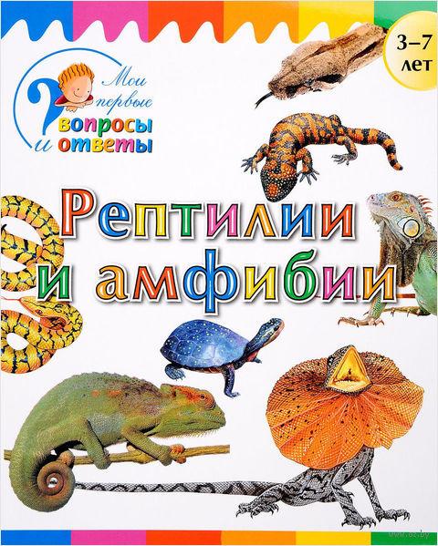 Рептилии и амфибии — фото, картинка