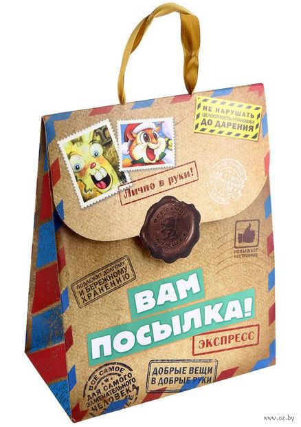 """Пакет бумажный подарочный """"Вам посылка"""" (18х23х10 см; арт. 10367427)"""