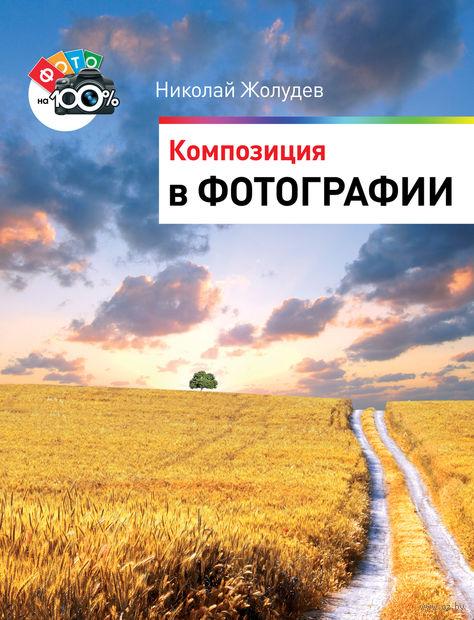 Композиция в фотографии. Николай Жолудев