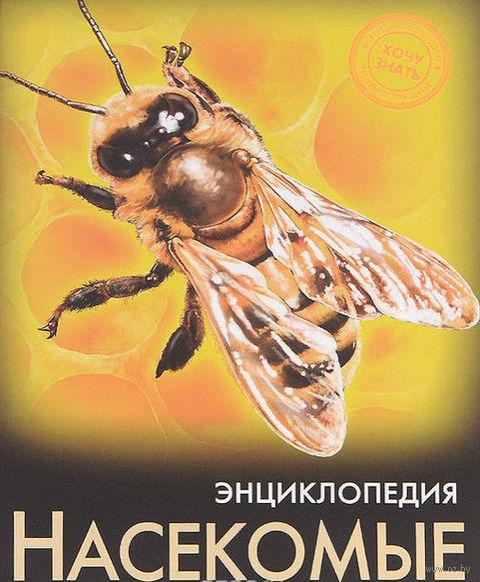 Энциклопедия. Насекомые — фото, картинка