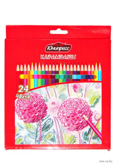 "Цветные карандаши ""Цветы"" (24 цвета)"