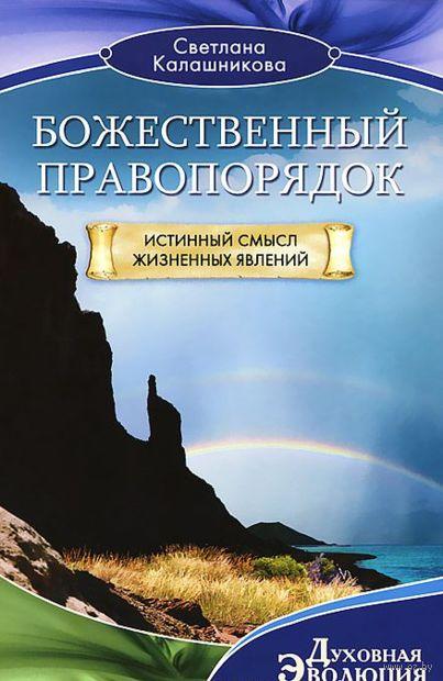 Божественный правопорядок. Истинный смысл жизненных явлений. Светлана Калашникова