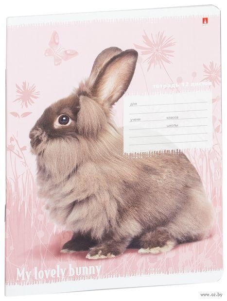 """Тетрадь в клетку """"Милые крольчата"""" (12 листов; в ассортименте) — фото, картинка"""