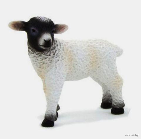 "Фигурка ""Animal Planet: Мериносовая овечка"""