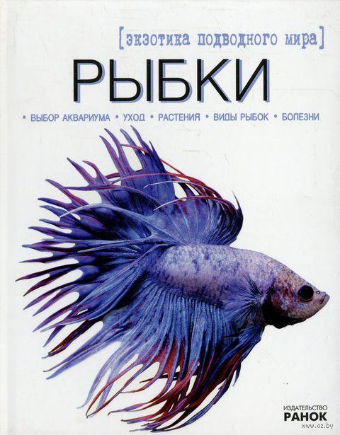 Рыбки - экзотика подводного мира — фото, картинка